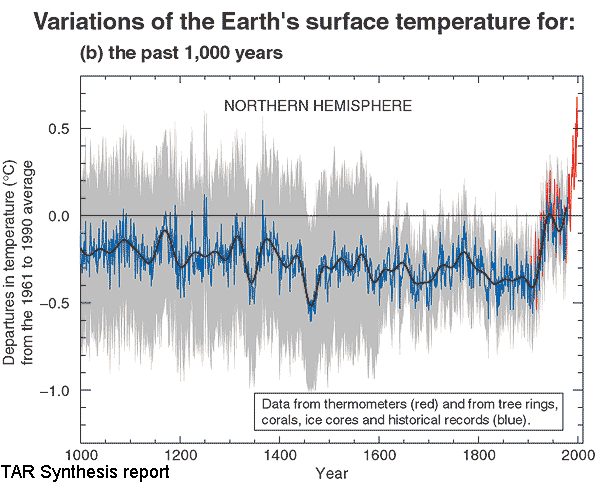 Mann-IPCC Hockey Stick